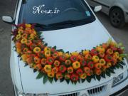 عکس/تزیین ماشین عروس با میوه