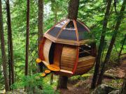 زیباترین خانه های جهان بر فراز درختان