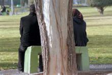 انتظارات غیرمعمول زوج از هم، دلیل اصلی اختلافات زناشویی/ زنان پایبند به خانواده ارزش وجودی خود را می دانند
