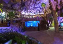 بزرگترین غار آکواریوم,همدان,دهکده گنجنامه,shabnamha.ir,شبنم همدان,afkl ih