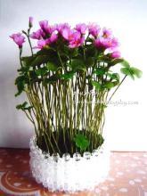 هنر در خانه,آموزش,درست کردن گل با جوراب,گل جورابی,shabnamha.ir,شبنم همدان,afkl ih