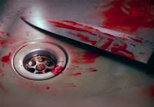قتل دختر جوان,همدان,دستگیری قاتل,رییس پلیس آگاهی همدان,shabnamha.ir,شبنم همدان,afkl ih,شبنم ها;